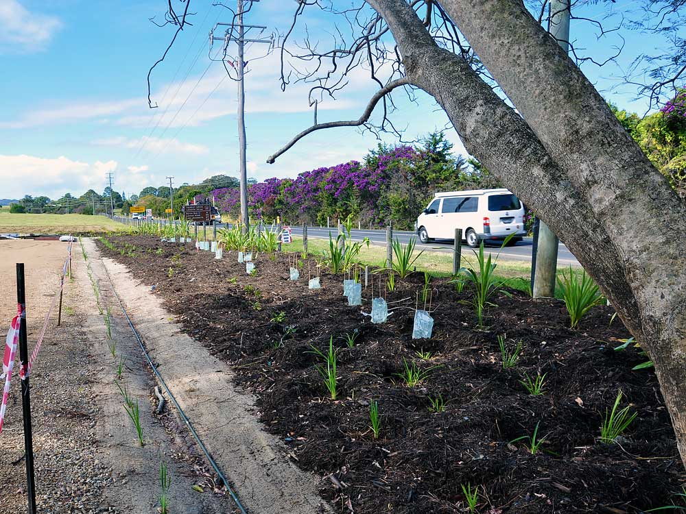 The Farm - Byron Bay Ennismore Field Landscape Architect