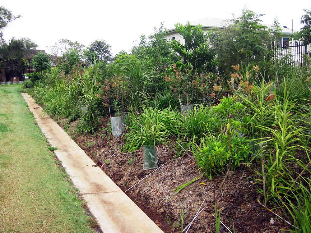 Esssential Energy Ennismore Field Landscape Architect